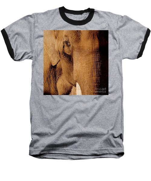 Brown Elephant Baseball T-Shirt