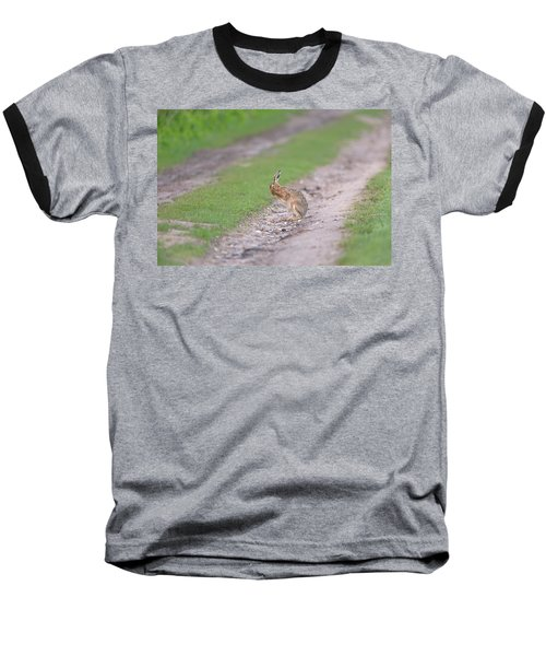 Brown Hare Cleaning Baseball T-Shirt