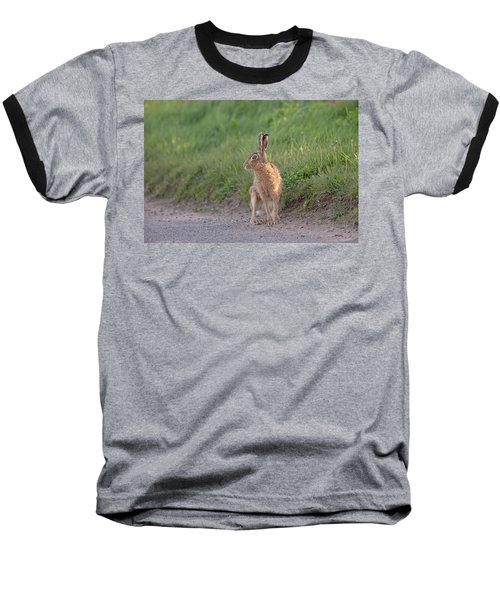 Brown Hare Listening Baseball T-Shirt