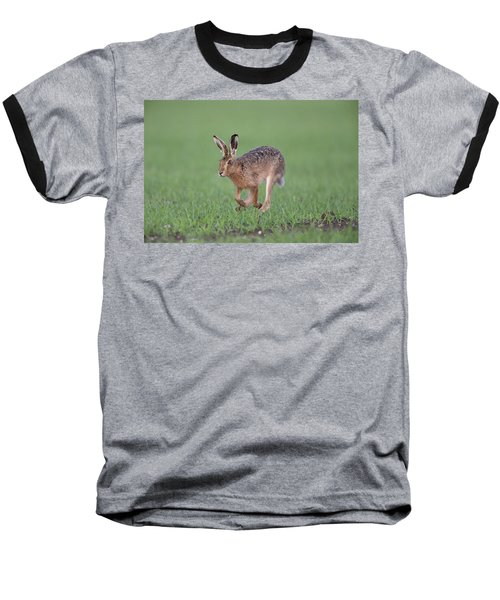 Brown Hare Running Baseball T-Shirt