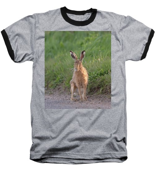 Brown Hare Sat On Track At Dawn Baseball T-Shirt