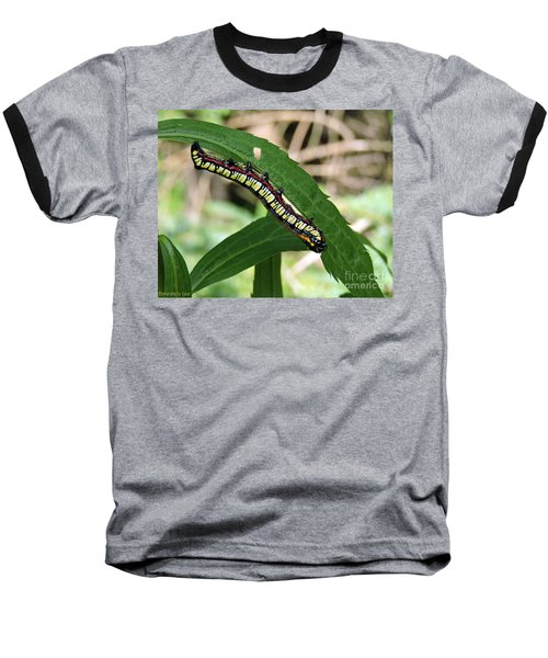 Baseball T-Shirt featuring the photograph Brown Hooded Owlet Moth Larva  by Gena Weiser