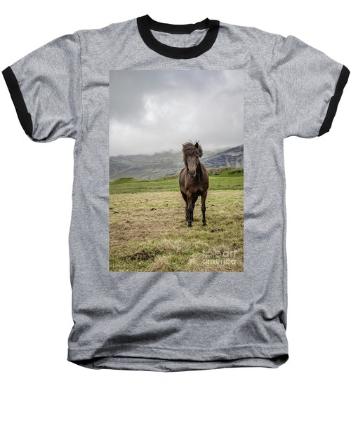 Baseball T-Shirt featuring the photograph Brown Icelandic Horse by Edward Fielding