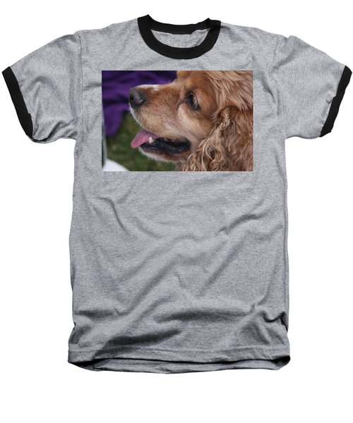 Baseball T-Shirt featuring the photograph Brownie by Vadim Levin