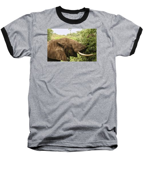 Baseball T-Shirt featuring the photograph Browsing Elephant by Gary Hall