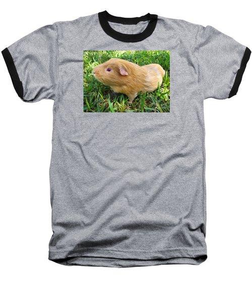 Brutus Baseball T-Shirt by Joy Hardee