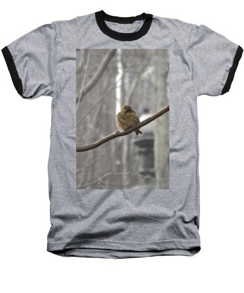 Bryant Park Bird Nyc Baseball T-Shirt