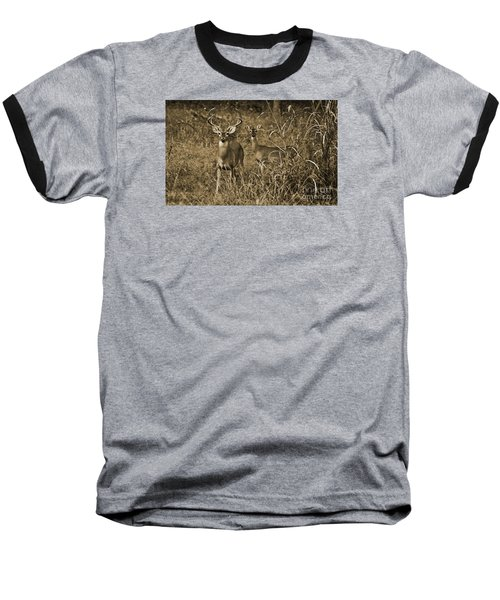 Buck And Doe In Sepia Baseball T-Shirt