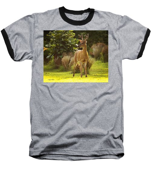 Baseball T-Shirt featuring the photograph Buck by Angel Cher