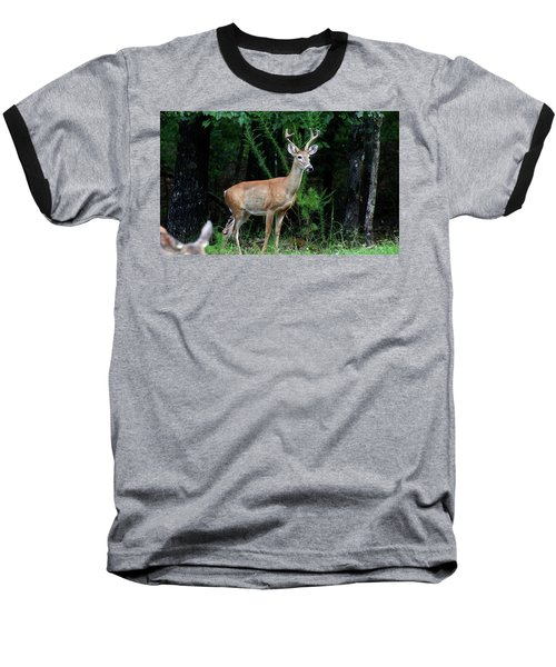 Buck Baseball T-Shirt