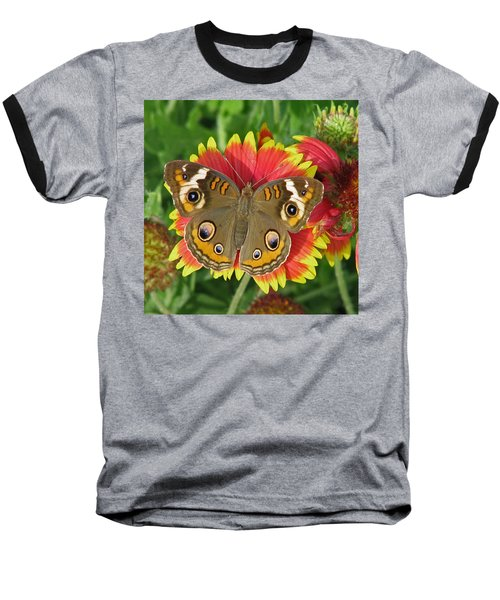 Buckeye On Blanketflower Baseball T-Shirt