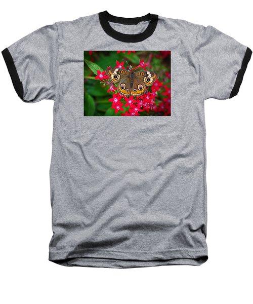 Buckeye On Pentas Baseball T-Shirt by Judy Wanamaker