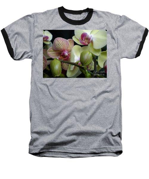 Budding Orchids  Baseball T-Shirt