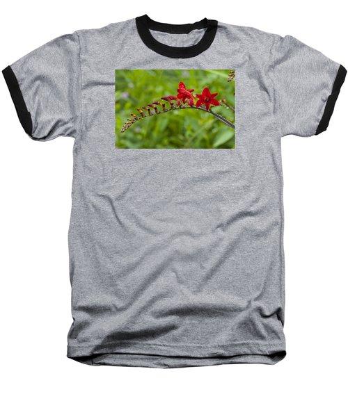 Budding Red Baseball T-Shirt