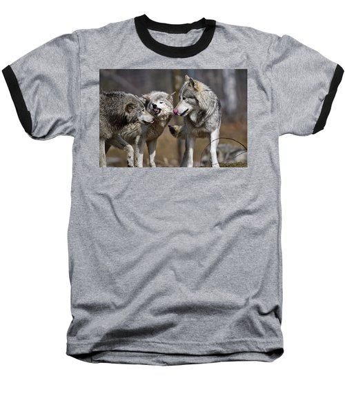 Baseball T-Shirt featuring the photograph Buddy You Are Just Not Listening by Michael Cummings