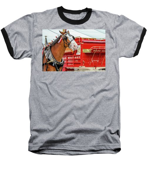 Baseball T-Shirt featuring the photograph Budweiser Clydesdale In Full Dress by Bill Gallagher
