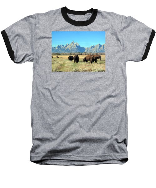 Baseball T-Shirt featuring the photograph Buffallo  by Irina Hays