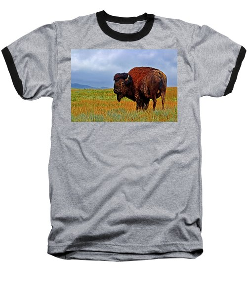 Baseball T-Shirt featuring the photograph Buffalo 006 by George Bostian