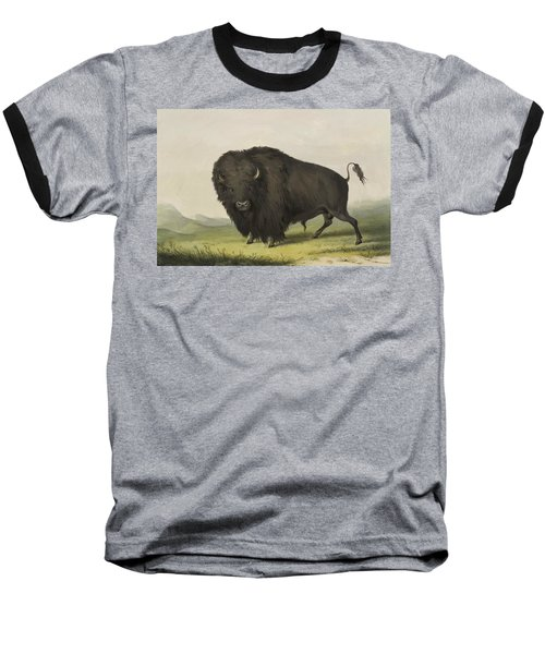 Buffalo Bull Grazing 1845 Baseball T-Shirt