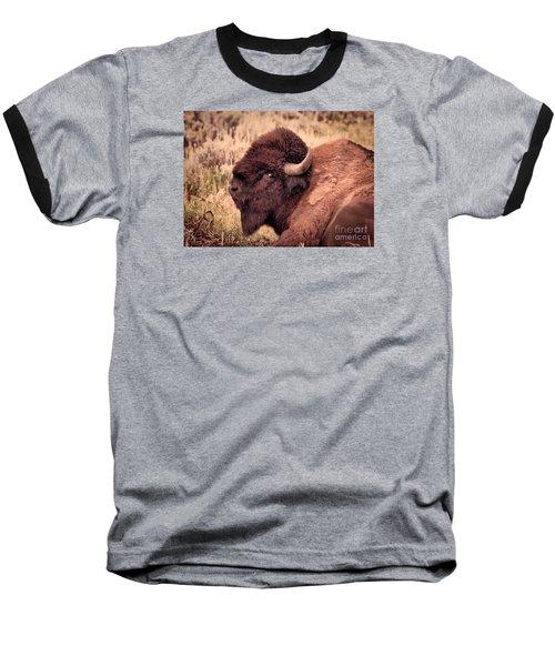 Baseball T-Shirt featuring the photograph Buffalo Eye On You by Janice Rae Pariza