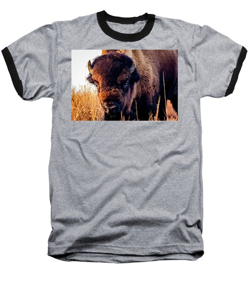 Buffalo Face Baseball T-Shirt