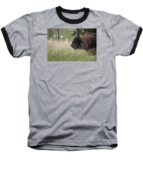 Buffalo Gal 20120724_378a Baseball T-Shirt by Tina Hopkins