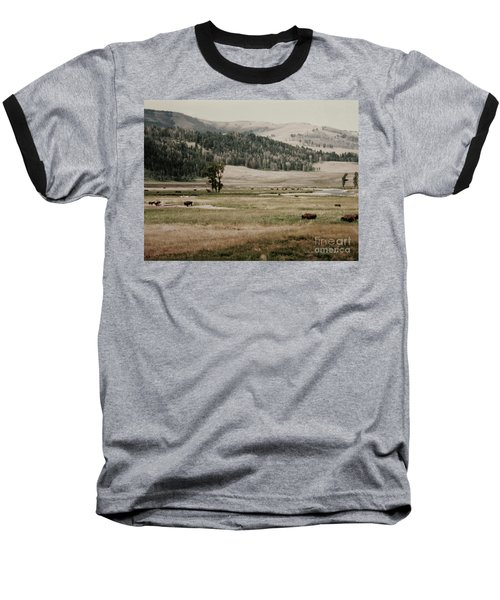 Buffalo Roam Baseball T-Shirt