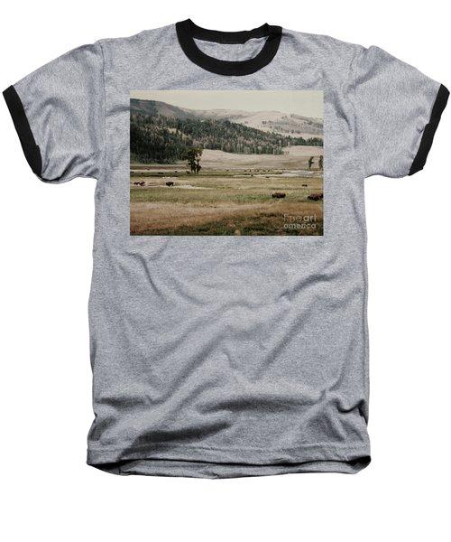 Buffalo Roam Baseball T-Shirt