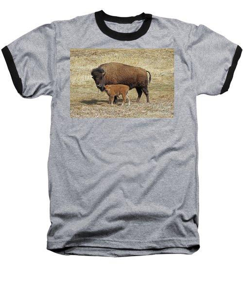 Buffalo With Newborn Calf Baseball T-Shirt