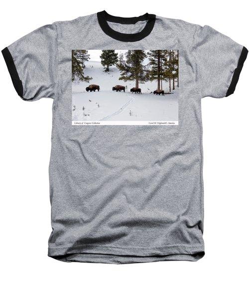 Buffaloes In Yellowstone National Park Baseball T-Shirt by Carol M Highsmith