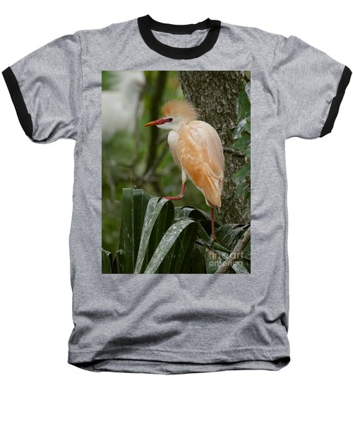Buffy - The Cattle Egret Baseball T-Shirt by Myrna Bradshaw