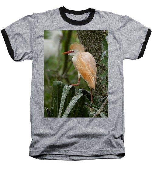 Buffy - The Cattle Egret Baseball T-Shirt