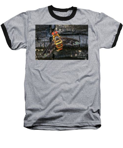 Bug With Red Eyes Baseball T-Shirt by Tom Claud