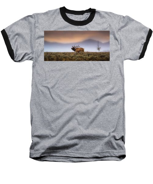Bugle Boy  Baseball T-Shirt