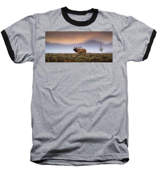 Bugle Boy  Baseball T-Shirt