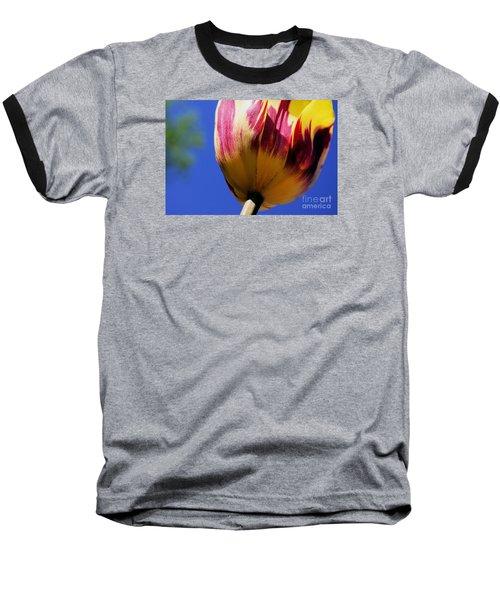 Bugs  Pov  Baseball T-Shirt