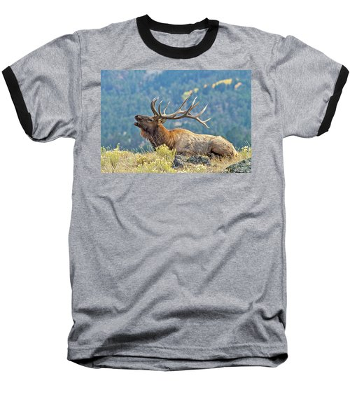 Baseball T-Shirt featuring the photograph Bull Elk Bugling by Wesley Aston