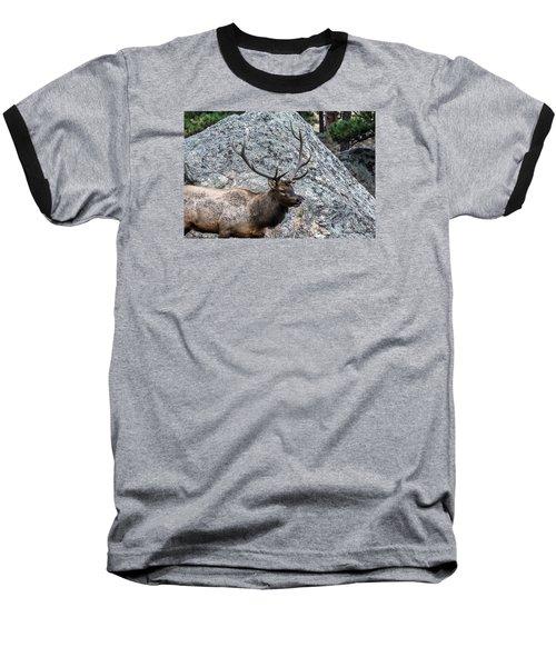 Baseball T-Shirt featuring the photograph Bull Elk Granite Moss Rock by Stephen  Johnson