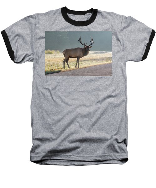 Bull Elk Watching Baseball T-Shirt