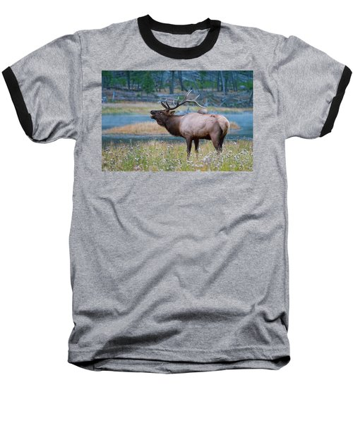 Baseball T-Shirt featuring the photograph Bull Elk by Wesley Aston