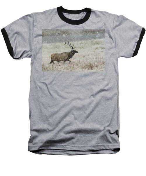 Bull Elk With Snow Baseball T-Shirt