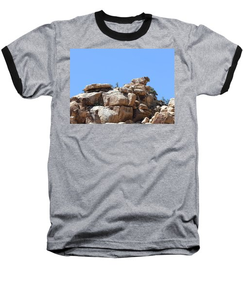 Bull From Joshua Tree Baseball T-Shirt by Viktor Savchenko