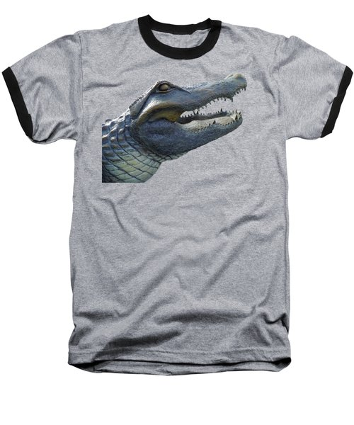Bull Gator Portrait Transparent For T Shirts Baseball T-Shirt by D Hackett