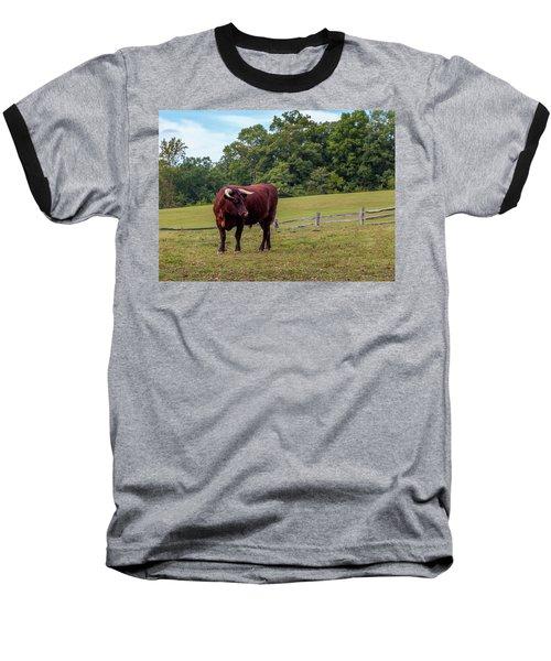 Bull In Field Baseball T-Shirt
