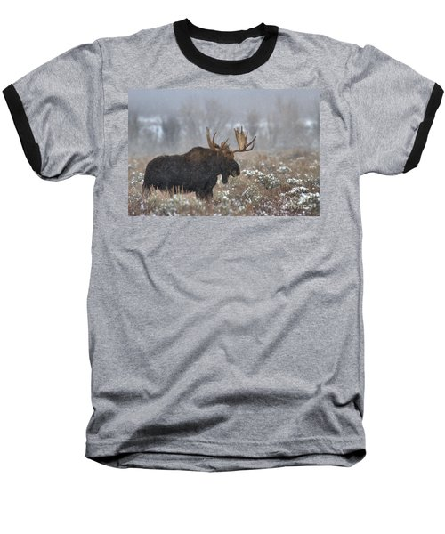 Baseball T-Shirt featuring the photograph Bull Moose In The Fog by Adam Jewell