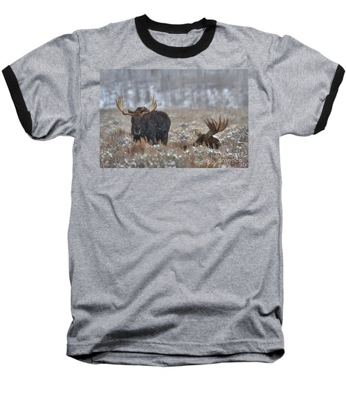 Baseball T-Shirt featuring the photograph Bull Moose Winter Wandering by Adam Jewell