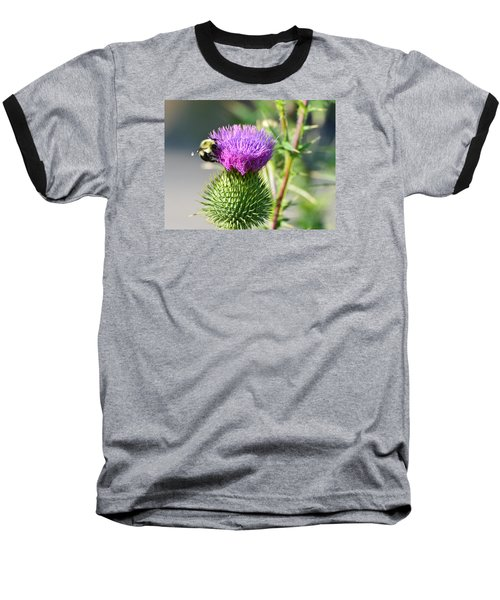 Baseball T-Shirt featuring the photograph Bumble Bee And Purple Thistle  by Lyle Crump