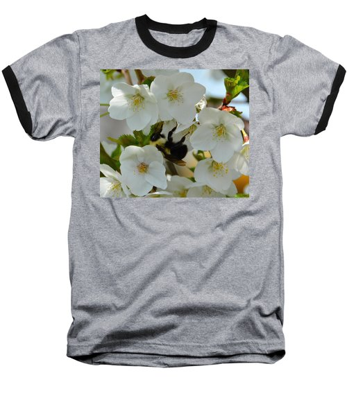 Bumble Bee In Hiding Baseball T-Shirt