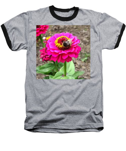 Bumble Bee On Pink Flower Baseball T-Shirt