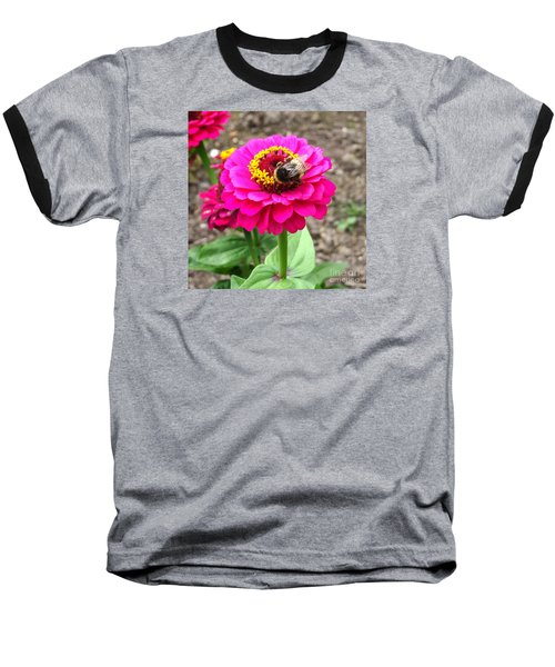 Bumble Bee On Pink Flower Baseball T-Shirt